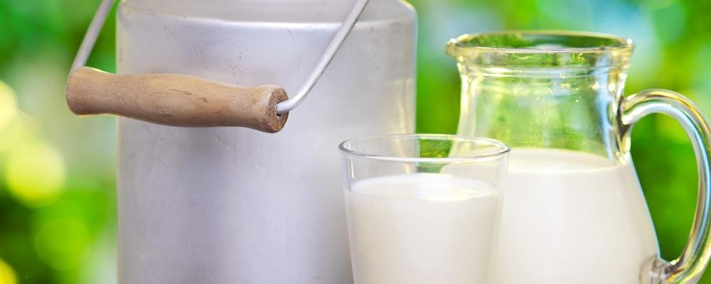 пробиотических пищевых продуктов Теледиетолог
